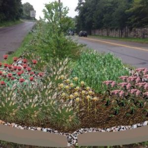 Neighborhood Gateway Rain Garden Plans