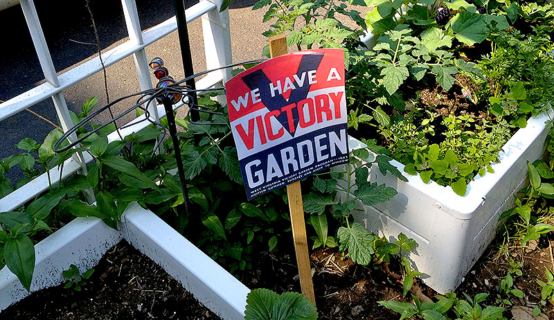 "Use Stanton Heights Compost to plant a ""Victory Garden"""